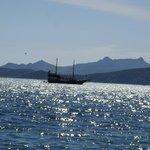 Море, солнце и яхты....