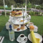 High Tea on the lawn