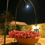 Moonlight in the courtyard