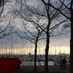 Vista  do  lago  em  Lausanne ( Occhi )