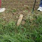 UXB in field Rods foot on left