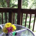 Favorite writing spot on the deck