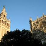 Dos joyas, la Giralda y la catedral.