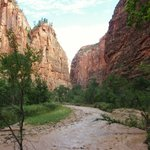 Zion, Riverside Walk 1