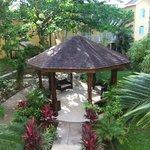 Gazebo in garden area