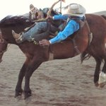 Royal Gorge Rodeo and Blossom Festival, first weekend in May