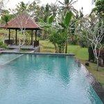 La piscine d'où vous pouvez apercevoir les rizières
