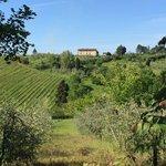 Close to Il Vicaro
