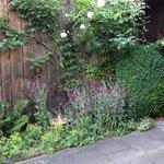 Aussicht im Garten