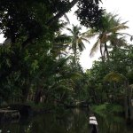 Backwaters of Kainakary