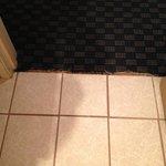 Carpet ratty between bathroom and hallway