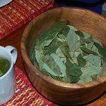 Coca tea leaves.