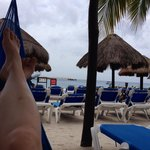 View from back of beach area, hammocks too!