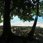 Vista da Cabana, Praia Brava de Palmas