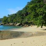Praia Brava de Palmas