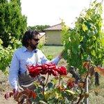 Ettore showing us the grape vines.