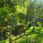 jardines superiores