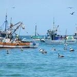 el puerto de Mancora