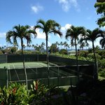 looking out onto tennis courts