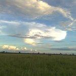 View of Hwange National Park in Zimbabwe