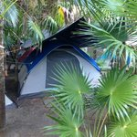 Very clean and well equipped tent