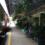 Lush Green Station - Kuranda