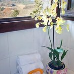 what about a shower looking at San Gimignano towers?