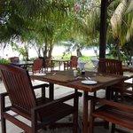 ресторан отеля  - здесь можно обедать и ужинать.