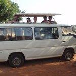 Safari min-bus