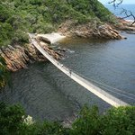Storms River - Tsitsikamma National Park Hike