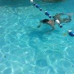 Rica la piscina