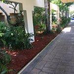 walkway to the tiki bar,pool and jacuzzi