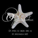 Ophiuroidea The O