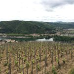 Hermitage Overlooking the Rhone