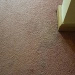 Stained Carpet - Can't take a photo of the smell