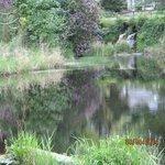 Beautiful grounds with spectacular gardens
