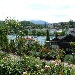 Views of the botanical garden in Spiez.
