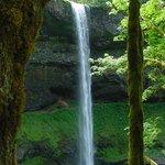 Silver Falls #5
