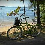 Bicicleta proporcionada por Panama's Paradise Saigoncito para desplazarse por Isla Colón
