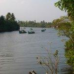 Boats off fishing at 16.30