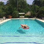 Grande et jolie piscine