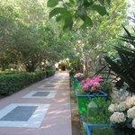 Hotel garden/beach entrance