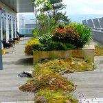 """""""garden"""" terrace"""