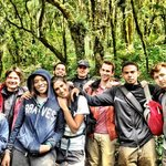 Trekking through the lush forest