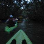 Photo de Yokahu Kayak Trips, Inc.