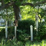 Cool little bird houses nestled under a old oak tree.