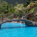 Bridge at beautiful cool pool