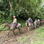 Horseback Riding at the Resort