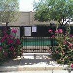 The pool gate