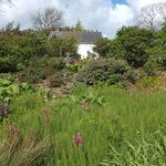 The cottage at Dyffryn Fernant, looking up from part of the gardens